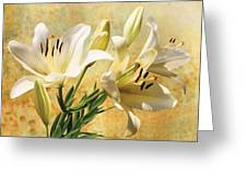 White Lilies On Amber Greeting Card
