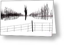White Lines Fenced In  Greeting Card