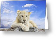White Lion Greeting Card by Anek Suwannaphoom