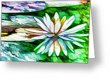 White Lotus In The Pond Greeting Card