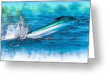 White Marlin -  From The Outer Banks Of North Carolina To Cape M Greeting Card