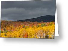 White Mountain Hillside Greeting Card