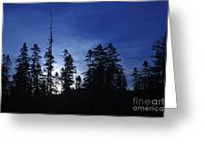 White Mountain National Forest - New Hampshire Greeting Card