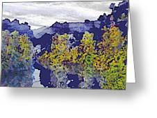 White Northern Night Greeting Card