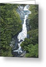White Oak Canyon Greeting Card