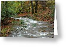 White Oak Run Autumn Greeting Card