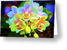 White Orchids Pastel Greeting Card