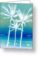 White Palms Greeting Card