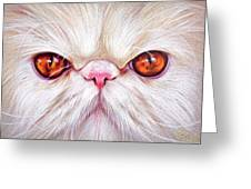 White Persian Cat Greeting Card