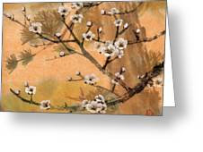 White Plum Blossoms With Pine Tree Greeting Card