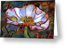 White Poppy Flower Greeting Card