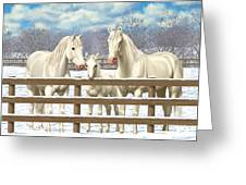 White Quarter Horses In Snow Greeting Card by Crista Forest