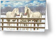 White Quarter Horses In Snow Greeting Card