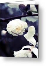 White Rain Greeting Card