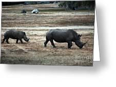 White Rhino's Greeting Card