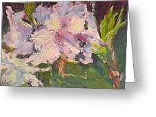 White Rhodedendrons Greeting Card