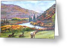 White River Greeting Card