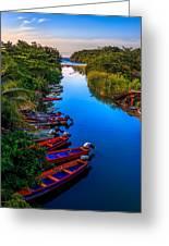 White River Jamaica Greeting Card