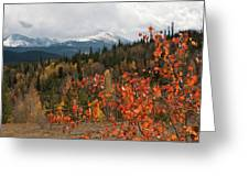 White River National Forest Autumn Panorama Greeting Card