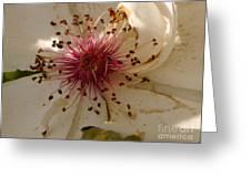 White Rose Centerpiece Greeting Card