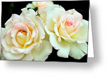 White Rose Cluster Greeting Card