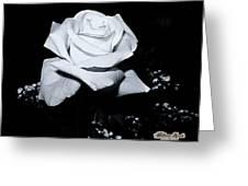 White Rose N Babies Breath Greeting Card by William Havle