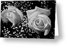 White Roses Bw Fine Art Photography Print Greeting Card