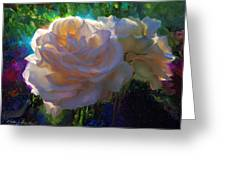 White Roses In The Garden - Backlit Flowers - Summer Rose Greeting Card