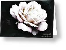 White Rose,stylization Greeting Card