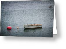 White Rowboat And Seagull Greeting Card