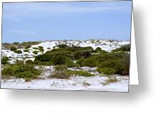White Sand Dunes And Blue Skies Greeting Card