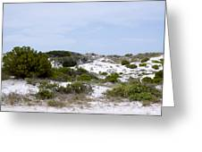 White Sand Dunes Greeting Card