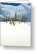 White Sand Green Grass Blue Sky Greeting Card