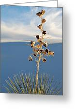 White Sands Yucca Greeting Card