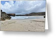 White Sandy Deserted Beach On The East Coast Of Aruba Greeting Card