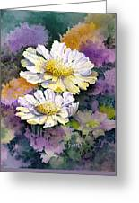 White Scabious Greeting Card