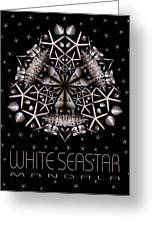 White Seastar Greeting Card