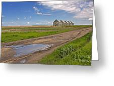 White Sheds On A Prairie Farm In Spring Greeting Card