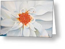 White Smile Greeting Card