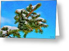 White Snow On Evergreen Greeting Card
