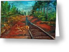 White Tail Deer In Southern Woods Greeting Card