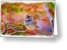 White Throated Sparrow - Digital Paint 3 Greeting Card