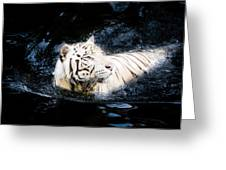 White Tiger 21 Greeting Card