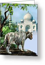 White Tiger And The Taj Mahal Image Of Beauty Greeting Card
