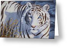 White Tiger - Crystal Eyes Greeting Card by Crista Forest