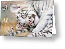 White Tiger Dreams Greeting Card