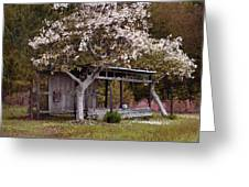 White Tree And Old Barn Greeting Card