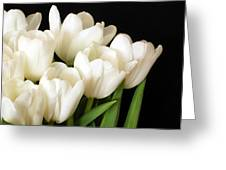 White Tulips 1 Greeting Card