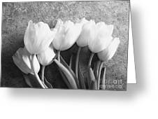 White Tulips Against Wallpaper Greeting Card