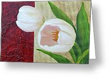 White Tulips Greeting Card by Phyllis Howard